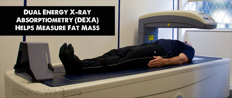 Dual Energy X-ray Absorptiometry (DEXA) Helps Measure Fat Mass