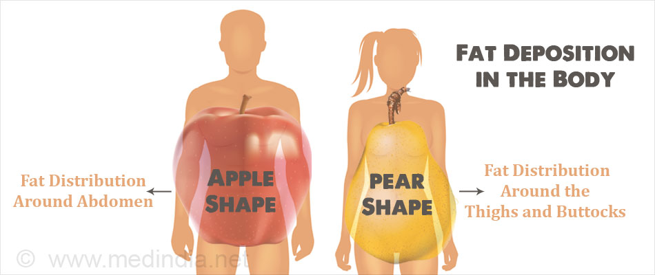 Fat Deposition in the Body