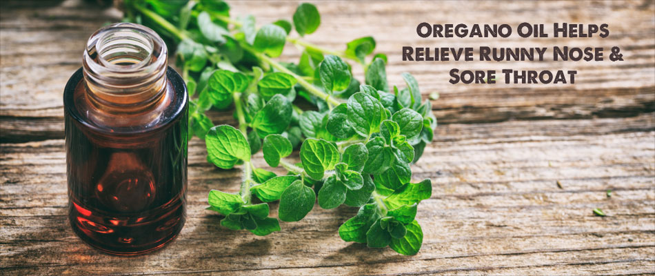 Oregano Oil Helps Relieve Runny Nose & Sore Throat