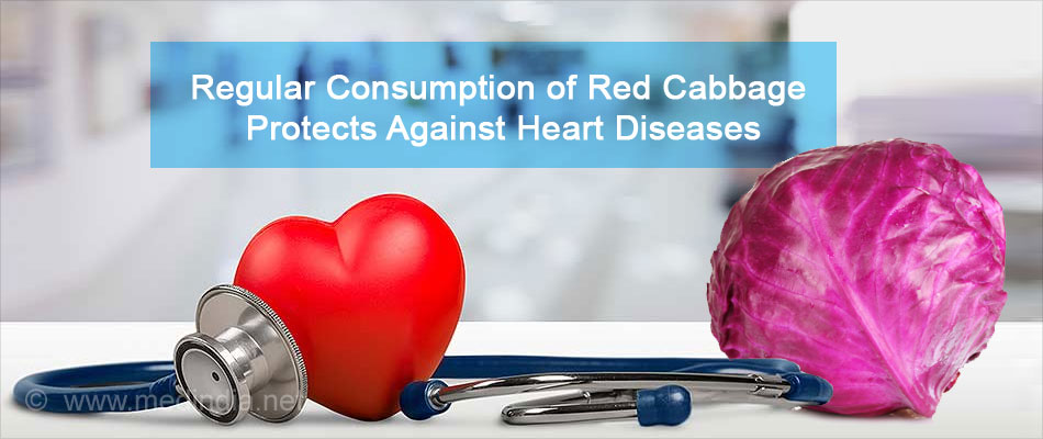 Regular consumption of Red Cabbage Protects Against Heart Diseases
