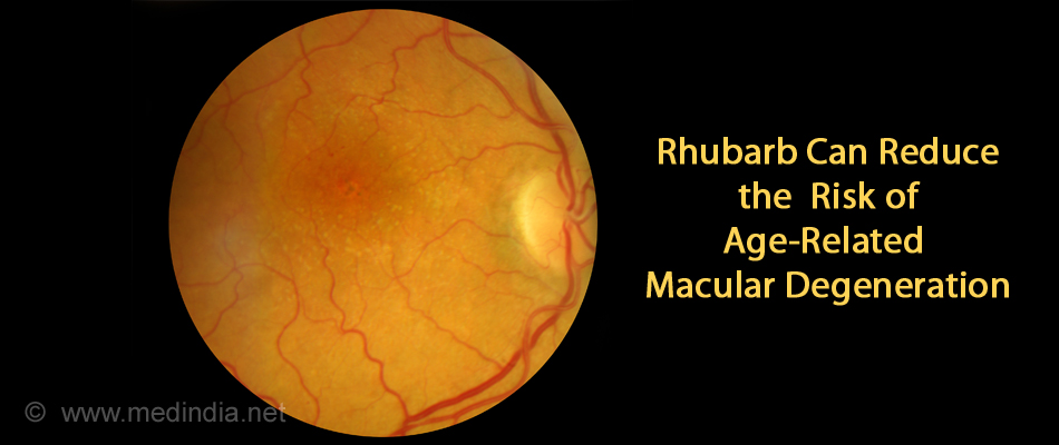 Rhubarb Reduces the Risk of Age-Related Macular Degeneration