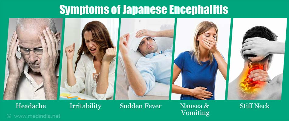 what you should know about japanese encephalitis types