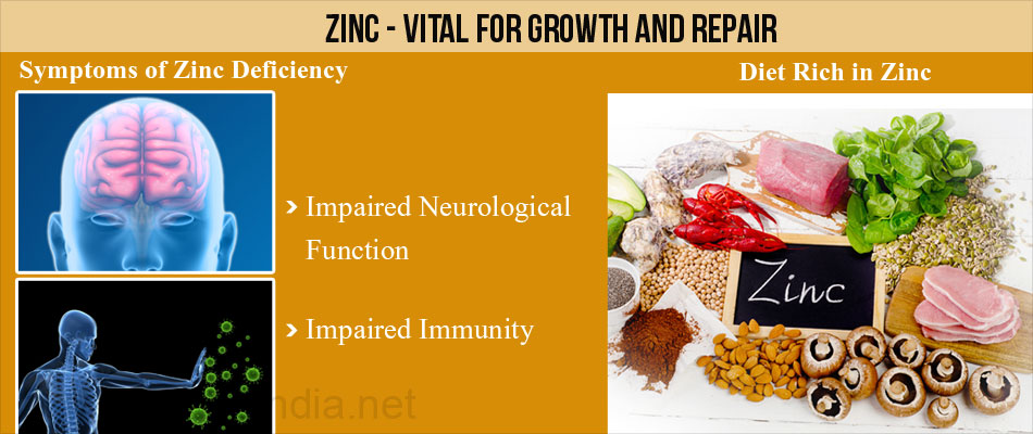 Symptoms of Zinc Deficiency & Diet Rich in Zinc