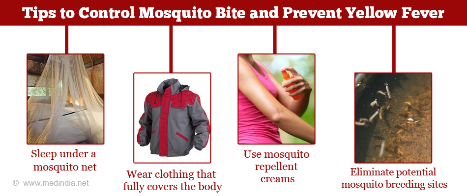 Tips to Control Mosquito Bite and Prevent Yellow Fever