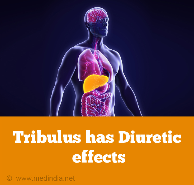 Tribulus Extract Helps Cure Liver Disease