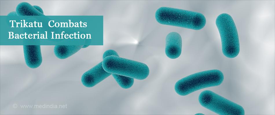 Trikatu Combats Bacterial Infection