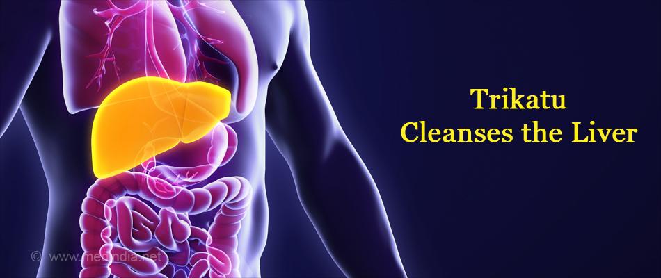 Trikatu Cleanses the Liver