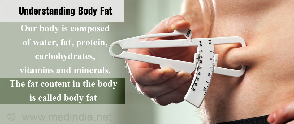 Understanding Body Fat