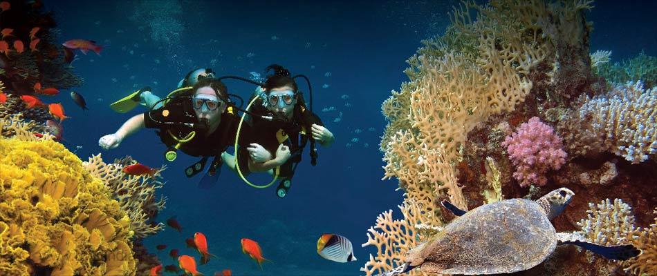 Top 14 Health Benefits of Scuba Diving
