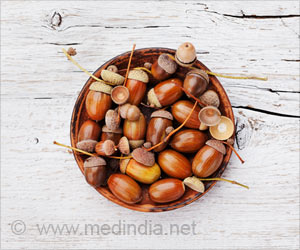 Health Benefits of Acorns