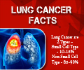Lung Cancer - Infographics