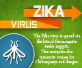 Zika Virus - Infographics