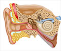 Ear Blockage - Causes