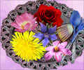 Edible Flowers for Health