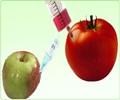 Genetically Modified Food - About