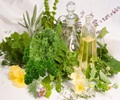 Home Grown Herbs for Holistic Nutrition