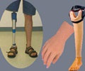 Artificial Limbs - History of Artificial / Prosthetic Limbs