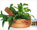Benefits of Sage Leaves