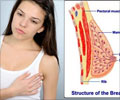 Breast Pain Symptom Evaluation