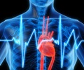 Cardiac Markers - Types of Cardiac Markers