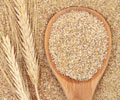 Top 5 Health Benefits of Wheat Germ