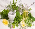 Herbs and Antioxidants