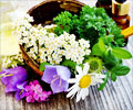 Herbs that Reduce Anxiety and Depression