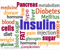 Insulin Hormone