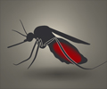 Malaria - Protection Strategies