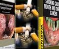 Smoking And Cancer - About