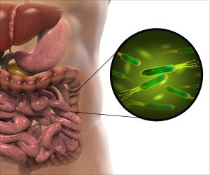 Amazing Benefits of Gut Bacteria