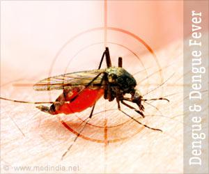 Dengue and Dengue Fever
