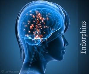 Endorphins Types Effects Symptoms Stimulation