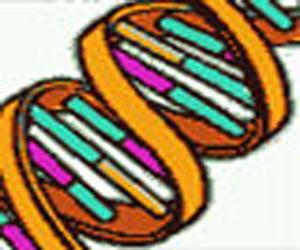 Genetic Testing of Diseases