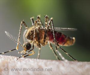 Yellow Fever / Acute Viral Hemorrhagic Fever