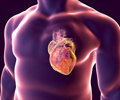 Test Your Knowledge on Coronary Heart Disease