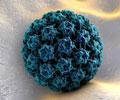 Test Your Knowledge on Human Papillomavirus (HPV)