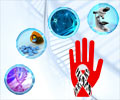 Test Your Knowledge on Rare Diseases