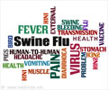 Quiz Yourself on Swine flu