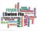 Quiz Yourself on Swine flu