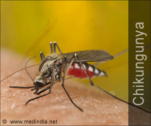 Test Your Knowledge on Chikungunya