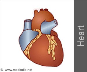 Test Your Knowledge on Heart