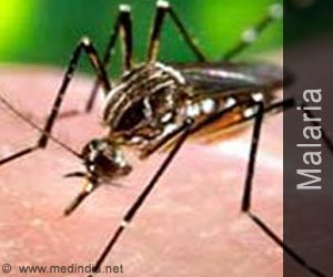 Test Your Knowledge on Malaria