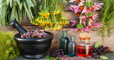 Herbal and Medicinal Plants