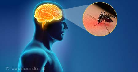 What You Should Know about Japanese Encephalitis