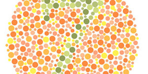 Test Your Knowledge on Color Blindness