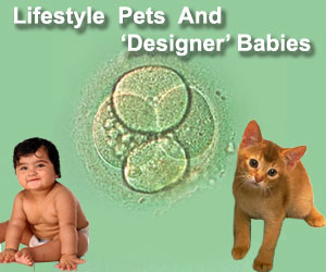 Life Style Pets And 'Designer' Babies