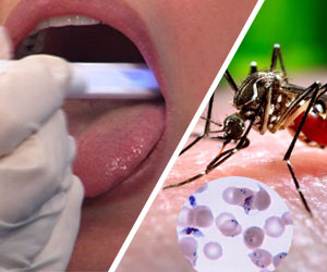 Can Saliva Be Used To Detect Malaria?