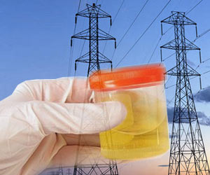 Urine as a Source of Power | MedIndia