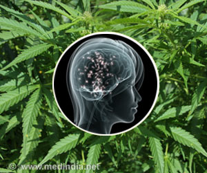 Brain Imaging Shows How Cannabis Controls Pain